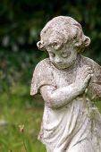 pic of cherub  - A little cherub child  praying in colour - JPG