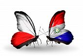 Two Butterflies With Flags On Wings As Symbol Of Relations Poland And Paraguay