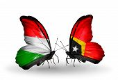 Two Butterflies With Flags On Wings As Symbol Of Relations Hungary And East Timor