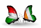 Two Butterflies With Flags On Wings As Symbol Of Relations Hungary And Cote Divoire