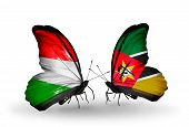 Two Butterflies With Flags On Wings As Symbol Of Relations Hungary And Mozambique