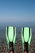foto of fin  - Looking at a blue sea past a pair of green fins  - JPG