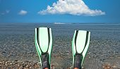 picture of fin  - Looking at a blue sea and water skiers past a pair of green fins - JPG
