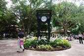 Unidentified People Walk Through The Singapore Botanic Gardens