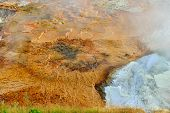 New Blue Spring In Mammoth Hot Springs Area Of Yellowstone National Park, Wyoming