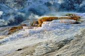 Mound Terrace In Mammoth Hot Springs Area Of Yellowstone National Park, Wyoming