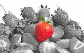 Red Strawberry Isolated On Balck And White