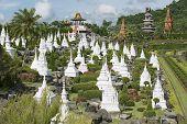 Nong Nooch Tropical Botanical Garden, Pattaya, Chonburi, Thailand.