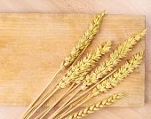 pic of fall-wheat  - Ears of wheat over the wooden cutting board composition - JPG