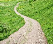 Outdoor winding path