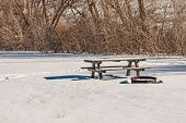 Picnic Table And Steel Fire Ring