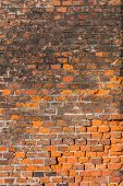 Vertical red brick wall background