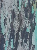 Close-up of old blue and grey painted wood as background