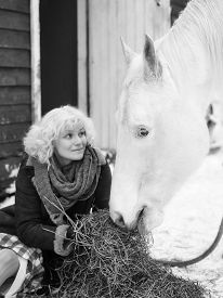 stock photo of feeding horse  - Attractive blond woman feeds a white horse overcast winter day black and white image focus on horse eyes  - JPG