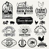 picture of food logo  - Farm logotypes set - JPG