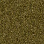 picture of dry grass  - Grass dry generated seamless texture or background - JPG