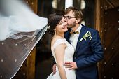 picture of wedding  - Portrait of a young wedding couple on their wedding day - JPG