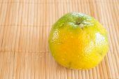 foto of honeysuckle  - Fresh of an orange honeysuckle stock photo - JPG