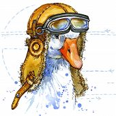 picture of baby goose  - Funny goose aviator hat with watercolor splash textured background - JPG