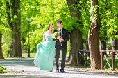 image of stroll  - Bride and groom - JPG
