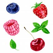 image of mints  - set of different berries - JPG