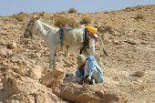 Bedouin Shepherd & His Donkey