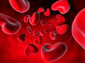 Heart shaped blood cells