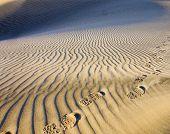 Footprints On The Sand.
