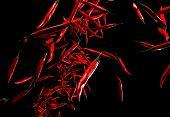 Capsicum: Red Chilli Pepper On Black