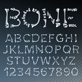 Bone Font Vector. Made Out Of Transparent Bones. Monster Horrible Font. Capitals Letters And Numbers poster