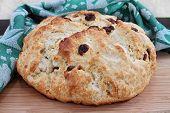 One Homemade, Fresh Loaf Of Irish Soda Bread With Raisins.  Macro poster