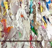 Shredded Paper For Recycling