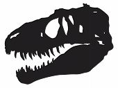 Vector Silhouette Of A Skull Of A Dinosaur poster