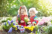Kids Plant And Water Flowers In Spring Garden poster