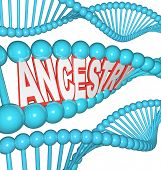 The word Ancestry in a DNA strand representing the search for your past by researching your genetics finding clues to your heritage and ancestors