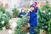 Two Little Siblings Kids Boys Holding Christmas Tree On A Market. Happy Children In Winter Fashion C poster