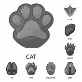 Vector Illustration Of Wildlife And Trace Symbol. Collection Of Wildlife And Walk Vector Icon For St poster