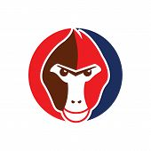 Monkey Logo / Monkey Head Logo Design Illustration poster