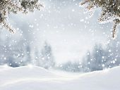 Snowfall in winter forest.Beautiful landscape with snow covered fir trees and snowdrifts.Merry Chris poster
