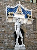 David And Entrance To Palazzo Vecchio