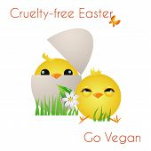 Happy Cruelty-free Easter