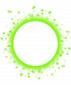 hierba verde en círculo