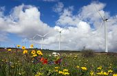 Generators In A Wind Farm