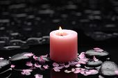 Peaceful Setting-candleand flower petals