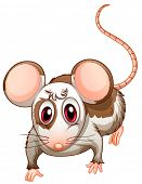 Illustration of a mouse on a white background