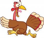 Turkey Escape Cartoon Mascot Character