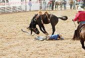 picture of bucking bronco  - a saddle bronc rider is bucked off during  a rodeo - JPG
