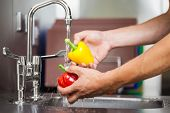 picture of porter  - Kitchen porter washing pepper under running tap in professional kitchen - JPG
