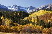 stock photo of mear  - Dallas Divide - JPG