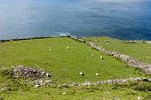 South West Coast Ireland